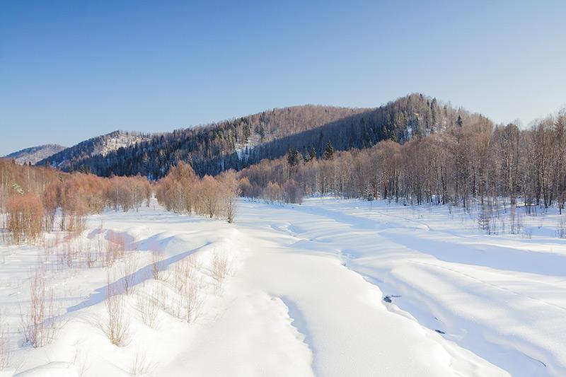 курорт белокуриха официальный сайт цены на 2016