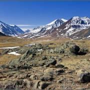 Елангаш - Алтай Фото, автор: Джазатор