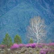 Атмосфера апрельских гор